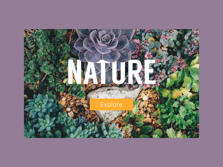 Dribbble-nature2.png